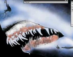 サメお絵かき