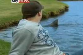ゴルフ場にサメ