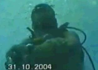 オオメジロザメに咬まれる